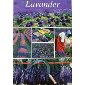 LAVANDER by Marc Guittery