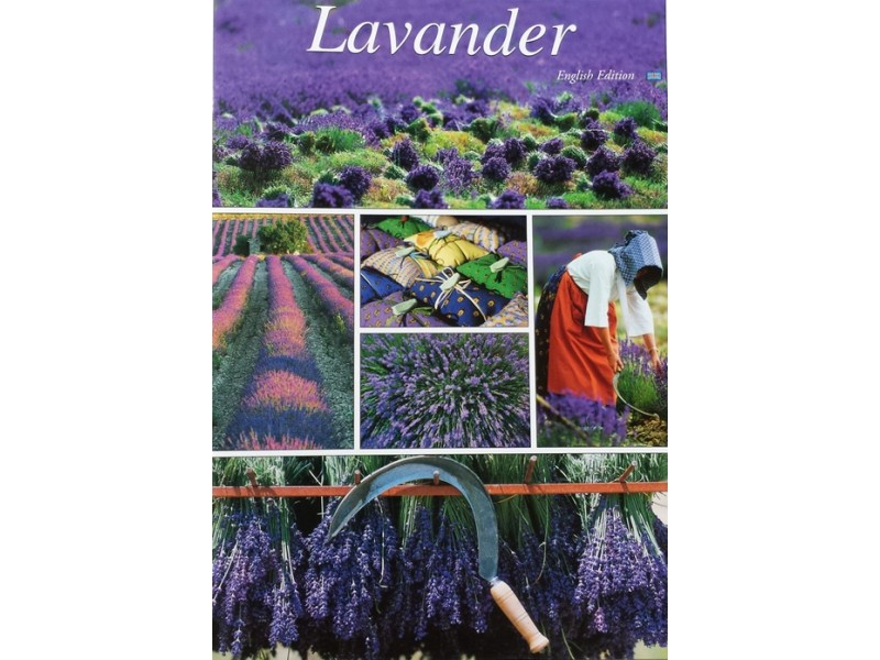 LAVANDER by Marc Guittery