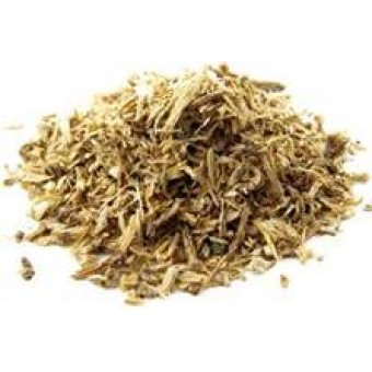 Angelica Root Essential Oil (Angelica archangelica L)