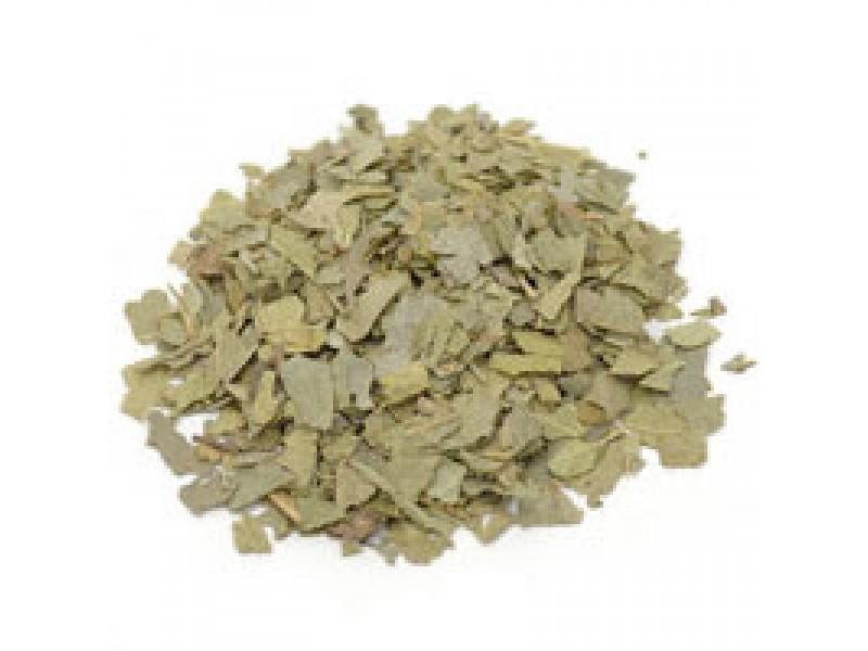 Boldo Leaves Essential Oil (Bupleurum fructicosum)