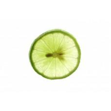 Lime Expressed Essential Oil (Citrus x aurantifolia)