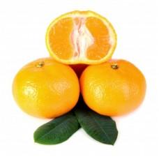Mandarin Petitgrain Essential Oil (Citrus reticulata)