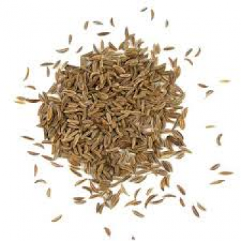Caraway Seed Essential Oil (Carum carvi)