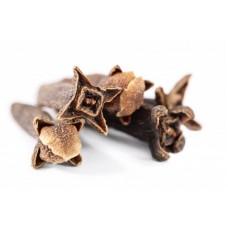 Clove Bud Essential Oil (Syzgium aromaticum)
