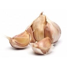 Garlic Essential Oil (Allium sativum ssp ursinum)