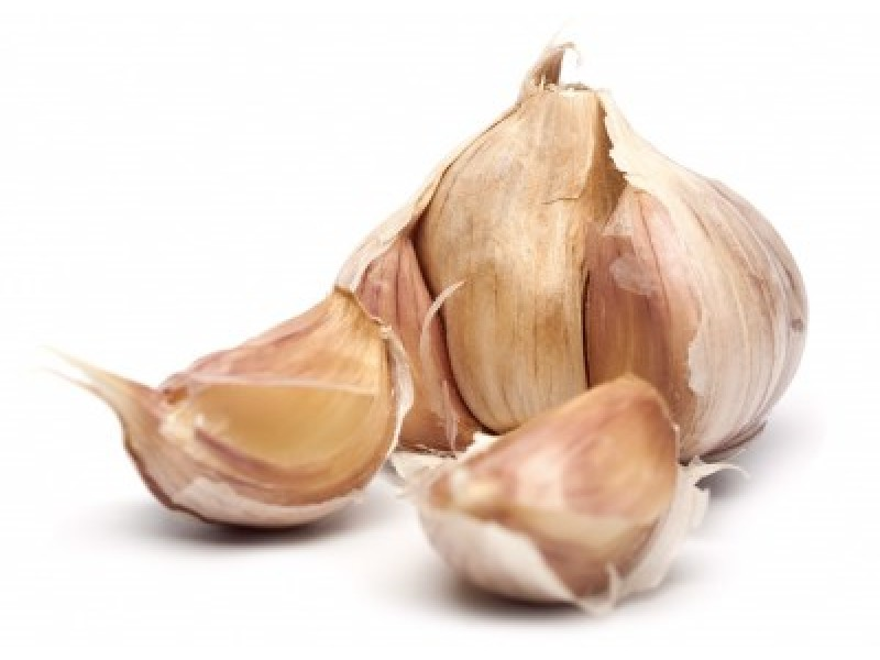 Garlic Essential Oil (Allium sativum ssp ursinum)