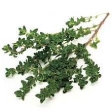Thyme Linalol CT Essential Oil (Thymus vulgaris)