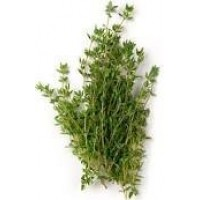 Thyme Cineole CT Essential Oil (Thymus vulgaris)
