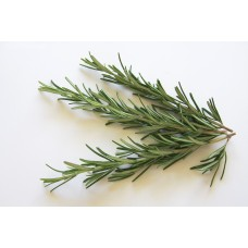 Rosemary Hydrolat, Organic.