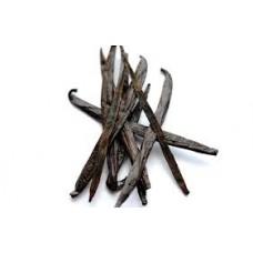 Tahitian Vanilla Herbal Oil