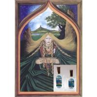Argante Fragrance