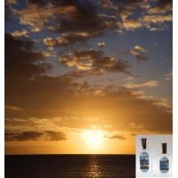 Summer Solstice Fragrance