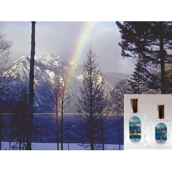 Winter Solstice Fragrance