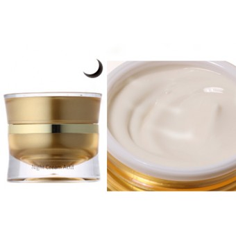 Night Cream Actif