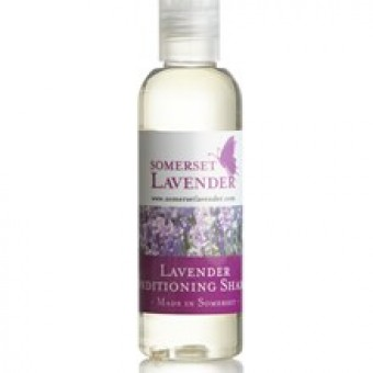 Lavender Conditioning Shampoo 100ml