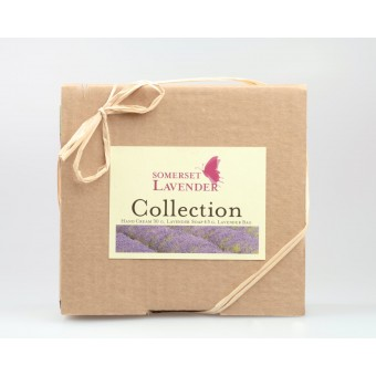 Somerset Lavender Collection Set