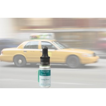 Travel Sickness Synergy Blend 10ml